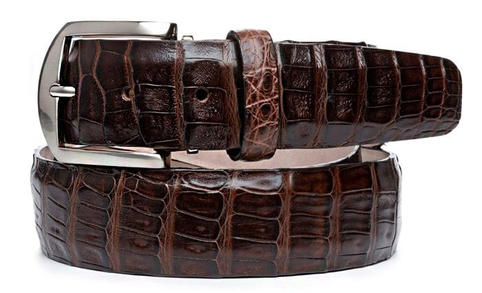 L.E.N. Lifestyle Caiman 40mm Belt in Brown