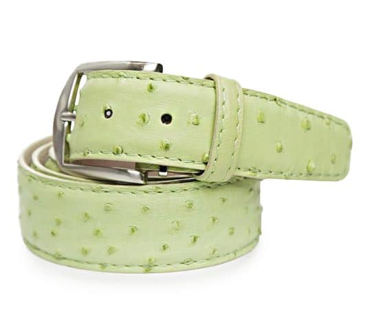 Ostrich 40mm L. E. N. Lifestyle Belt in Lime